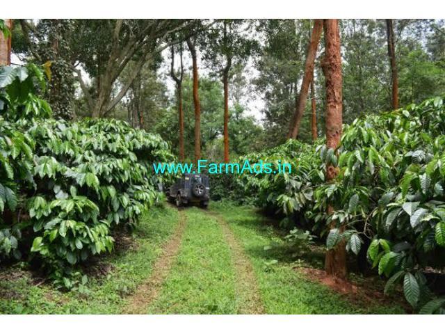 5 Acres Coffee Estate for Sale near Mallenahalli,BabaBudan Giri Hills
