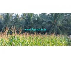 65 Acres Coconut Farm Land for Sale near Coimbatore