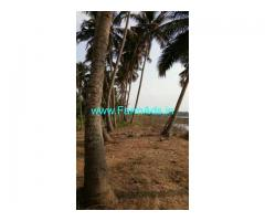River side 5 Acres Agriculture land for Sale in Mulki