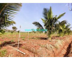 6 Acres Farm land for sale at Hampapura Hobli, H D Kote taluk.