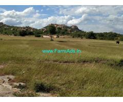 15 Acres Arecanut Farm Land for Sale near Amangal