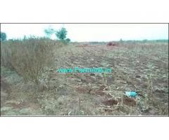 11 Acres agriculture land for sale near Zahirabad