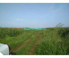 1 Acre Agriculture Land For Sale in Balanagar