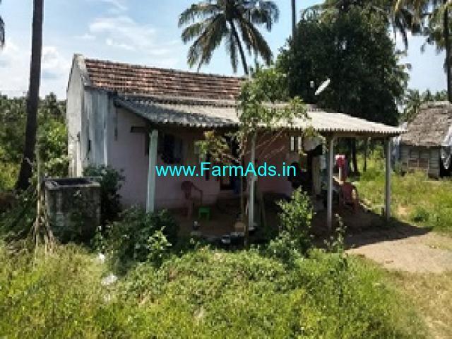 2.75 Acre farmland for sale near Palakkad