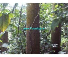 25 cent land with house for sale near Panamaram