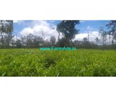 15 acre Tea estate for sale near Korome