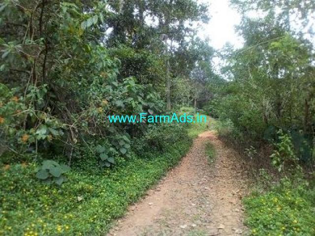 6.5 acres farmland for sale near Wayanad