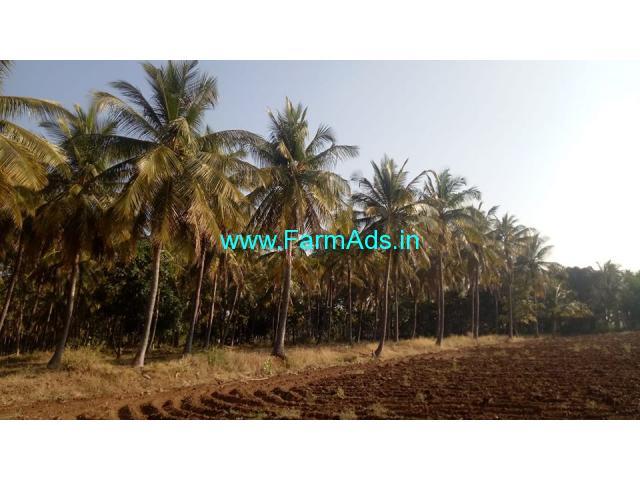 9 acre farm land for sale in Hiriyur, Chitradurga