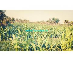 9 acre  farm land for sale in  vv Sagara road, Sira.