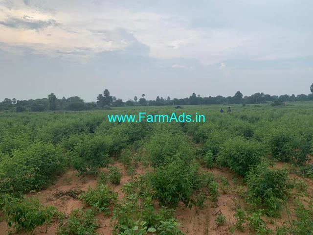 One Acre Agriculture Land for Sale Warangal high way & Yadagirigutta