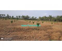8 Acres Agriculture land for sale near Narsipatnam