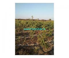 8.6 Acres Farmland for sale near Hiriyur