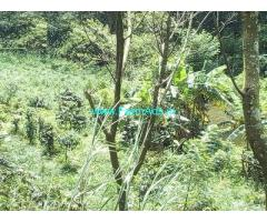 2 Acre Farmland with house for sale near Mananthavady