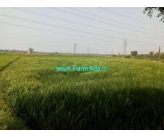 1 Acre Agriculture land Urgent Sale in Mandamarri