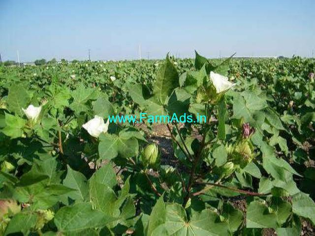 4.5 Acres Agriculture Land for Sale at Karimnagar