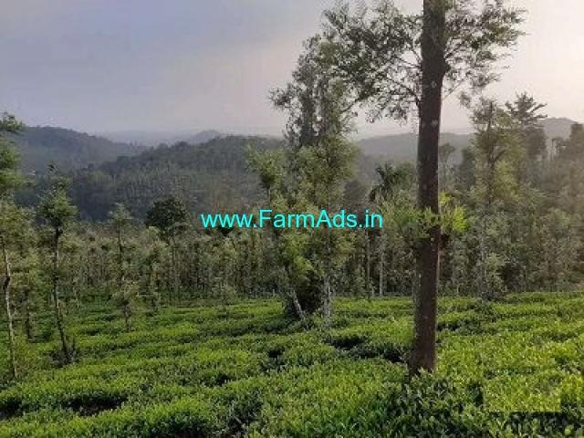 3.90 cent Farmland land for sale near Mananthavady