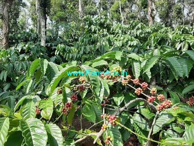5 Acre Farmland sale near Mananthavady