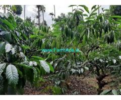 2 Acre farmland for sale near Thazha Munda
