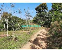 50 Cent Land for sale near Payyampally