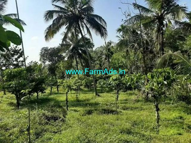 50 Cent Land for sale near Mananthavady