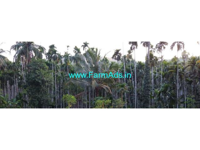 1 Acre Arecanut Farm for Sale near Bandadka