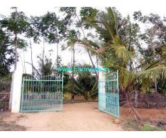 8 Acres Farmland for sale near Sira
