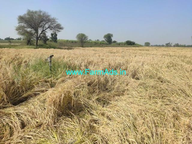4 Acre Agriculture land for Sale at Kamareddy