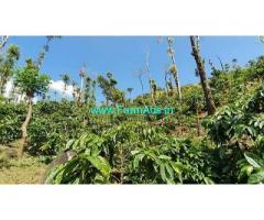 25 Acre Coffee Estate for sale near Mudigere