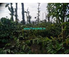 20 Acre Farmland with house for sale Near Chikmagalur