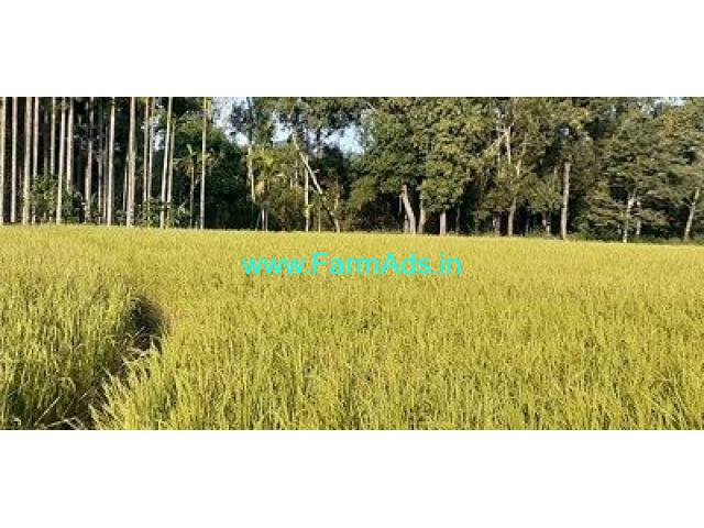 3.5 Acre Farmland for sale near Chikmagalur