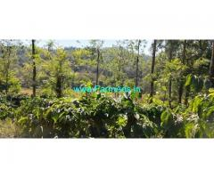3 Acres Coffee Estate for Sale at Malandur