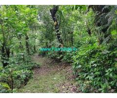 8.75 Acres Farmland for Sale Near Chikmagalur