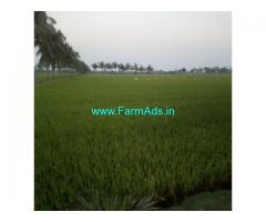 1 Acre Agriculture Land For Sale near Nellore,Krishnapatnam port