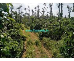 12 Acre Farm Land for Sale Near Chikmagalur