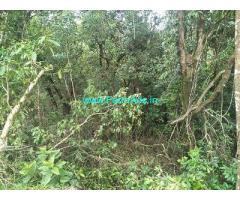 25 Acre Farm Land for Sale Near Chikmagalur