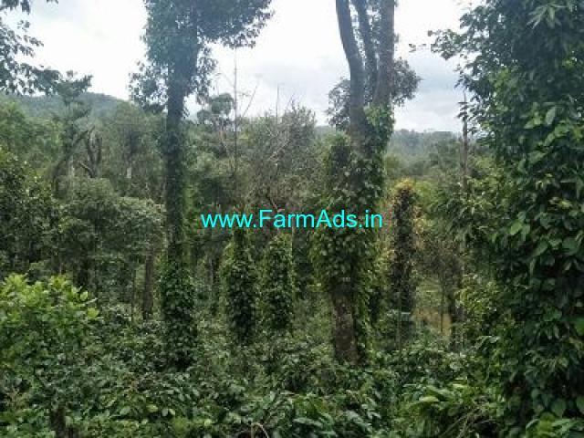 6 Acre Farm Land for Sale Near Chikmagalur