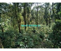 12 Acre Land for sale Near Chikmagalur