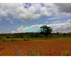 2.5 Acres Farm Land for Sale near Thally