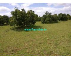 4.5 Acre of Agriculture Land in Thally