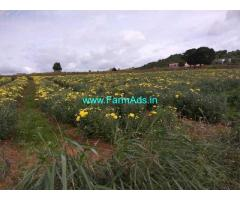 2.5 Acre Farm Land for sale Near Thally