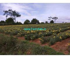 2.5 Acre Farm Land for sale Near Thally
