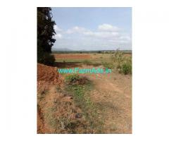 5 Acre Farm Land for Sale Near Thally