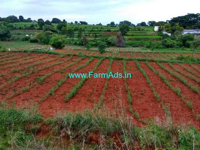 33 Acre Farm Land for Sale Near Denkanikottai