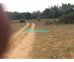 10 Acres Farm Land for Sale Near Denkanikottai