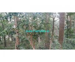 14 Acres Farm Land for Sale Near Madikeri