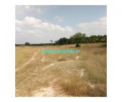 2 Acres Agriculture Land for Sale near Chiknayakanhalli