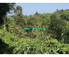 28 Acre Coffee Estate with Running Home stay for Sale Near Chikmagalur