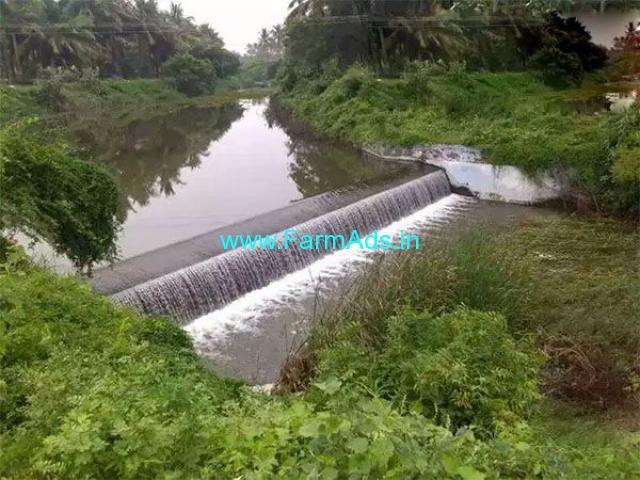 3.50 Acres Farm Land for Sale Near Dharapuram