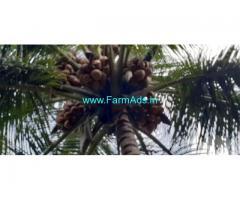 5 Acre Farm Land for Sale Near Dharapuram,pollachi Road