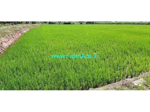 3.50 Acre Farm Land for Sale Near Karatholuvu